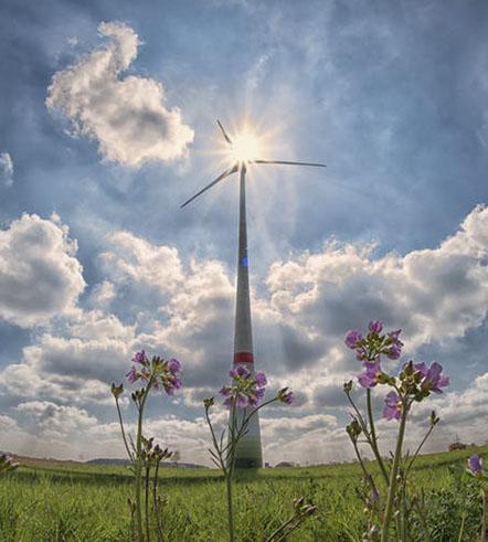 Contratar un Seguro de Responsabilidad Medioambiental